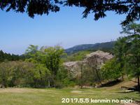 kenmin3.jpg